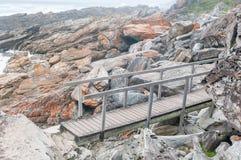 在瀑布足迹的桥梁 免版税库存照片