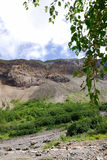 在瀑布附近的changbai 免版税库存图片