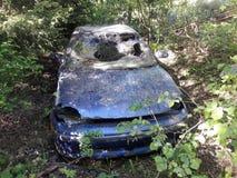 在灌木中间的老被击毁的汽车 库存图片
