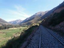 在灌木和玉米庄稼附近的火车轨道 库存图片
