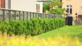 在灌木和草坪的看法在顶楼房子里 股票录像