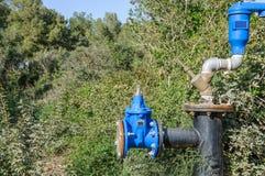 在灌木掩藏的管道工程管组 免版税图库摄影