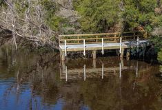 在灌木沿戈登河,西海岸塔斯马尼亚的小码头 库存图片