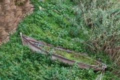 在灌木的一条击毁木小船子线在拉巴特 免版税库存图片