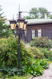 在灌木的减速火箭的灯在老木大厦背景  库存图片