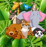 在灌木的野生动物 向量例证