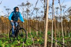在灌木的骑自行车者骑马 库存图片