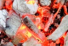 在火以后的炭烬 图库摄影