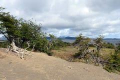 在火地群岛海岛上的Lago布兰科  免版税库存照片