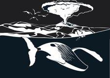 在火山下的鲸鱼游泳 库存照片