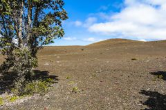 在火山国家公园,夏威夷里面的火山的风景 免版税库存图片