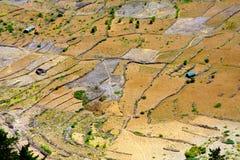 在火山火山口的耕种 免版税图库摄影