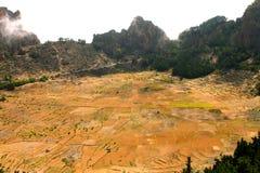 在火山火山口的耕种 免版税库存图片