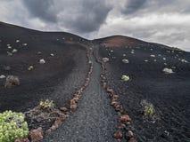在火山的地面的供徒步旅行的小道 免版税库存照片