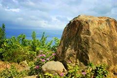 在火山的外缘的花 免版税图库摄影