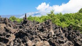 在火山Etna爆发以后的锋利的熔岩石头 库存图片