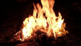 在火灼烧的照片 影视素材