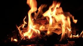 在火灼烧的照片 股票录像