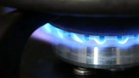 在火炉的燃烧的煤气喷燃器 影视素材