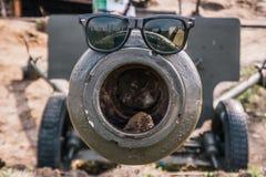 在火炮枪的太阳镜 库存照片