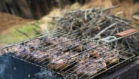 在火烤的开胃肉 库存照片