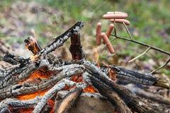 在火烤的棍子的香肠 免版税库存图片