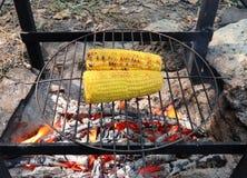 在火烤的玉米 免版税库存图片