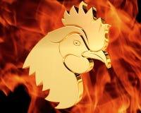 在火热的背景的金黄雄鸡 免版税图库摄影