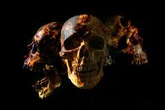 在火焰的顶头头骨在深黑色背景 免版税图库摄影