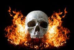 在火焰的顶头头骨在深黑色背景 库存图片