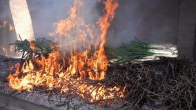 在火的传统加泰罗尼亚的calsots,慢动作 股票视频