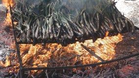 在火的传统calsots,慢动作 股票视频
