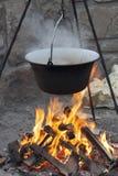 在火的大锅 免版税库存照片