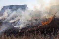 在火的干草 免版税图库摄影