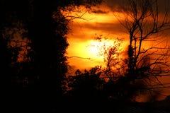 在火的日落 免版税库存照片