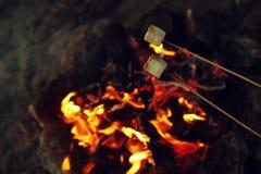 在火的油煎的蛋白软糖在晚上 野营的森林 库存图片
