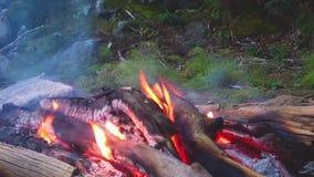 在火的活火焰 燃烧的木头,炽热炭烬 影视素材