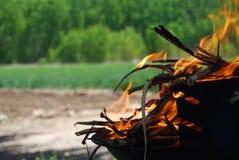 在火的烤肉在领域 免版税库存照片