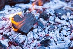 在火的烧心 木心脏被烧焦了和在煤炭的火焰 强的爱,灼烧的激情的概念 免版税库存照片