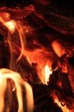 在火的煤炭 免版税图库摄影