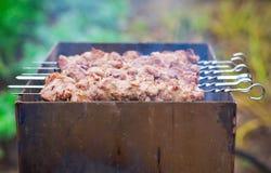 在火的猪肉烤肉串 免版税库存照片