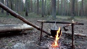 在火的罐在露营地 股票视频