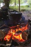 在火的荷兰烘箱 免版税库存照片