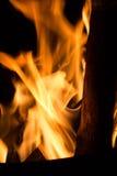 在火的被铭刻的木头 免版税库存照片