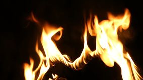 在火的重点 火焰 影视素材