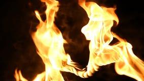在火的重点 火焰 股票视频