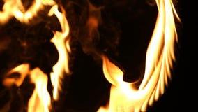 在火的重点 火焰 股票录像