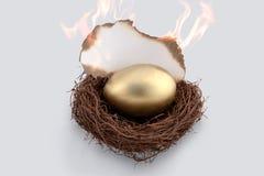 在火的金黄鸡蛋 免版税库存图片