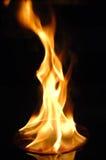 在火的CD 免版税库存图片