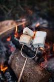 在火的Smores 免版税库存照片